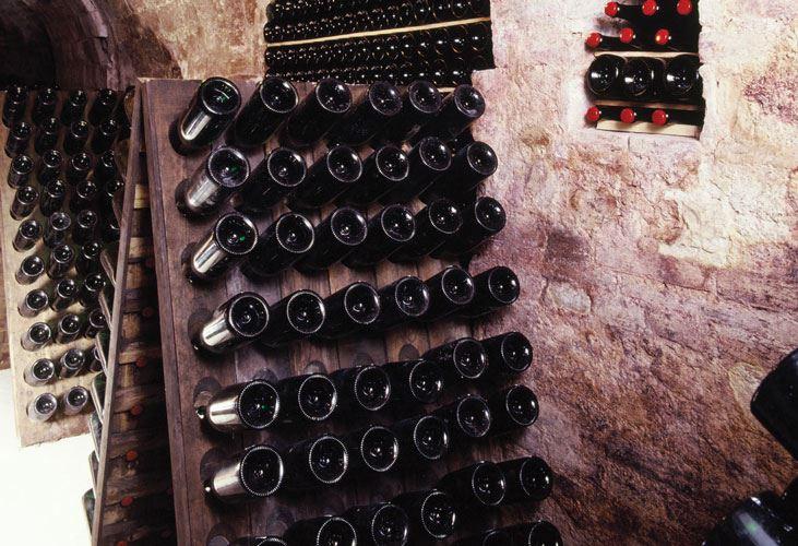 Fattoria Le Terrazze - produzione e vendita vino - Numana ...
